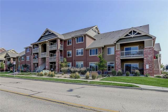 804 Summer Hawk Drive #8106, Longmont, CO 80504 (#7838398) :: Mile High Luxury Real Estate