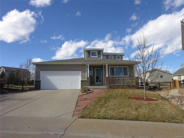 9619 Lone Iris Place, Littleton, CO 80125 (MLS #7838456) :: 8z Real Estate