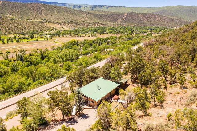 6296 Highway 82, Glenwood Springs, CO 81601 (#7838696) :: Re/Max Structure