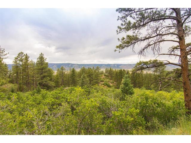 5080 S Perry Park Road, Sedalia, CO 80135 (MLS #7842127) :: 8z Real Estate