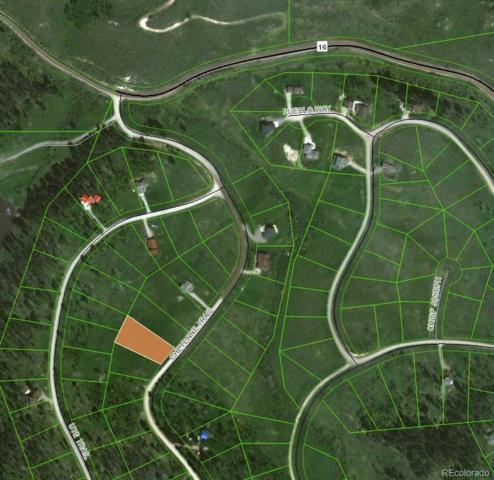 22559 Cheyenne Trail, Oak Creek, CO 80467 (#7844099) :: Wisdom Real Estate