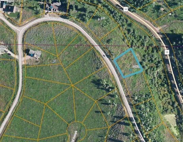 22616 Commanche Road, Oak Creek, CO 80467 (#7844575) :: The Artisan Group at Keller Williams Premier Realty