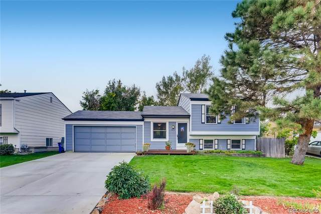 8853 Prickly Pear Circle, Parker, CO 80134 (#7856150) :: Sultan Newman Group