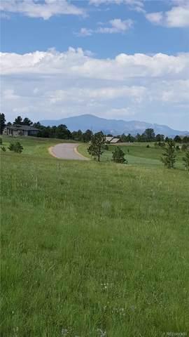4513 Settlers Ranch Road, Colorado Springs, CO 80908 (MLS #7856541) :: 8z Real Estate