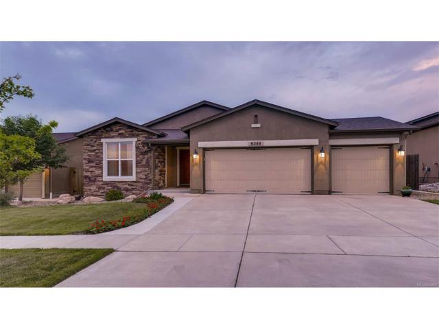 6348 Cumbre Vista Way, Colorado Springs, CO 80924 (MLS #7862754) :: 8z Real Estate