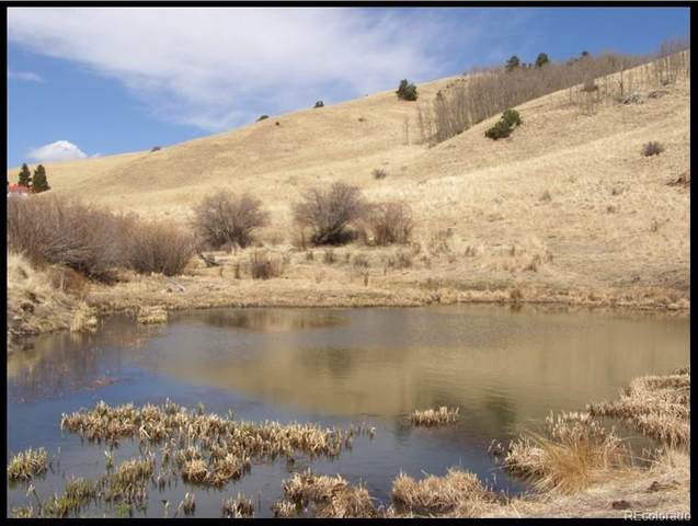 Williams Creek Rd, Westcliffe, CO 81252 (MLS #7863882) :: Bliss Realty Group