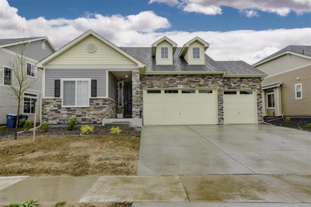 96 S New Castle Way, Aurora, CO 80018 (#7864451) :: The DeGrood Team