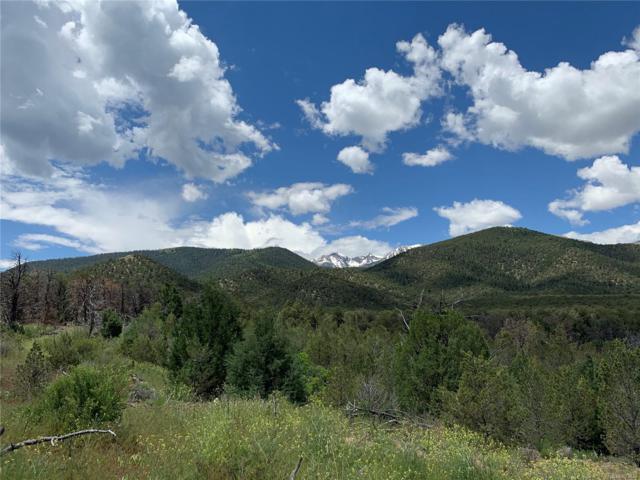 947 High Peaks Ranch Road, Coaldale, CO 81222 (MLS #7866177) :: 8z Real Estate