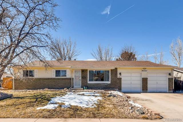 9037 Vrain Street, Westminster, CO 80031 (#7867830) :: The Brokerage Group
