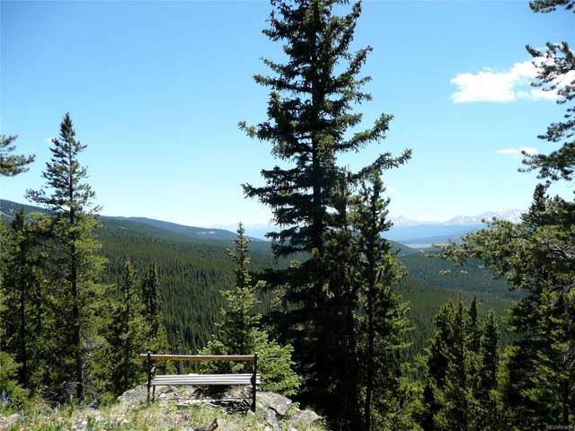 Forest Service 731 Road, Red Cliff, CO 81649 (MLS #7867958) :: 8z Real Estate