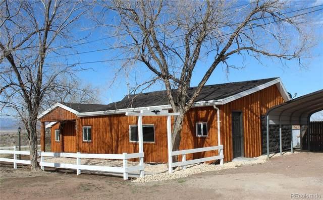 790 Beech Street, Coal Creek, CO 81221 (#7868654) :: The Artisan Group at Keller Williams Premier Realty