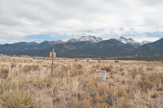 237 Rainbow Trout Trail, Crestone, CO 81131 (#7868690) :: Hometrackr Denver