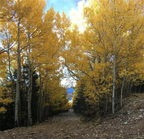 Mansfield 4.92 Acres, Idaho Springs, CO 80452 (#7868742) :: 5281 Exclusive Homes Realty