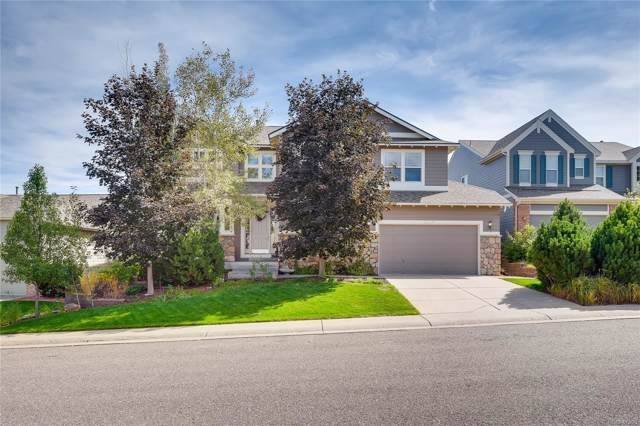 8376 Winter Berry Drive, Castle Pines, CO 80108 (#7869572) :: The HomeSmiths Team - Keller Williams