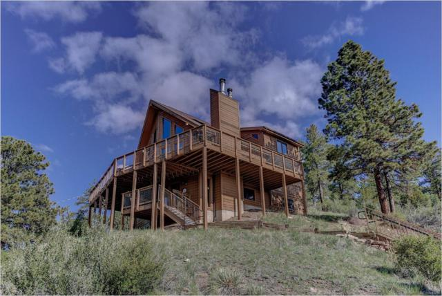 15194 S Swiss Road, Pine, CO 80470 (#7873140) :: The Heyl Group at Keller Williams