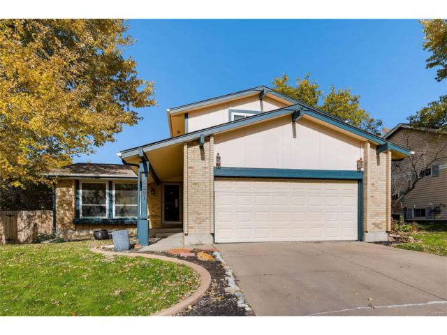 4291 W 109th Circle, Westminster, CO 80031 (#7875127) :: RE/MAX Professionals
