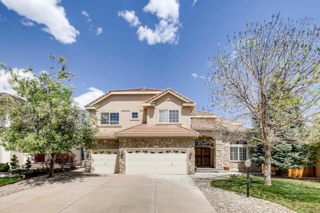 9116 S Cedar Hill Way, Lone Tree, CO 80124 (#7880097) :: The Galo Garrido Group