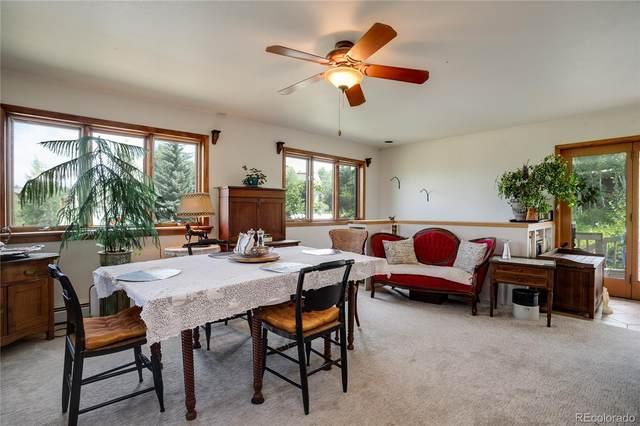 1830 Cornice Road, Steamboat Springs, CO 80487 (#7880990) :: The HomeSmiths Team - Keller Williams