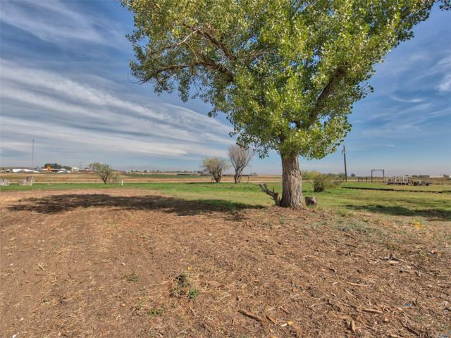 3171 County Road 6, Erie, CO 80516 (#7882988) :: The Griffith Home Team