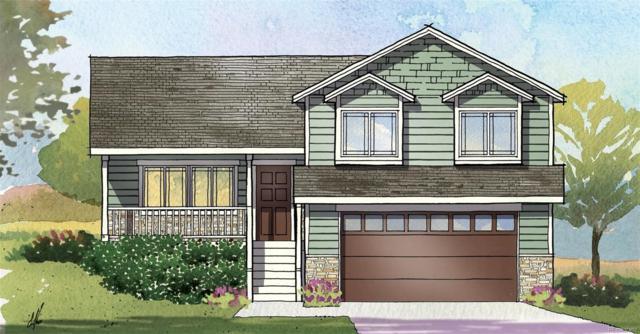 1018 Grand Avenue, Windsor, CO 80550 (#7885934) :: The Peak Properties Group