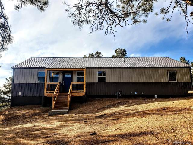 96 Cameron Circle, Florissant, CO 80816 (MLS #7887828) :: Keller Williams Realty