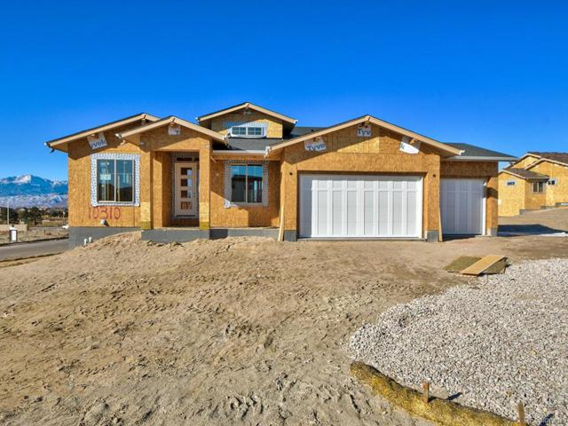 10310 Stagecoach Park Court, Colorado Springs, CO 80924 (#7889774) :: The City and Mountains Group