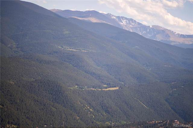 0000 Santa Fe Mine Road, Idaho Springs, CO 80452 (#7890525) :: Mile High Luxury Real Estate