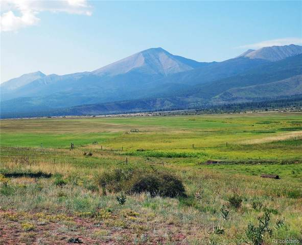 500 Two Creeks, Cotopaxi, CO 81223 (#7893933) :: Portenga Properties - LIV Sotheby's International Realty