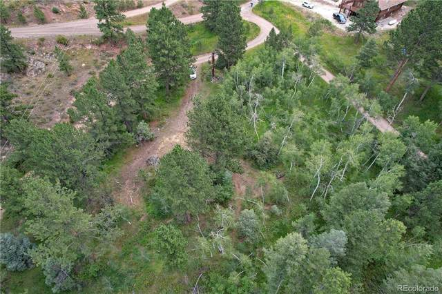 1133 Mount Champion Drive, Livermore, CO 80536 (MLS #7894138) :: Find Colorado