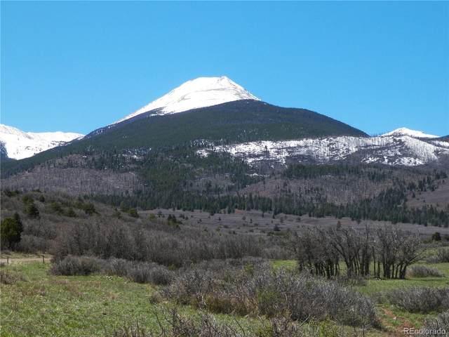 1768 Running Bear, Cotopaxi, CO 81223 (#7896564) :: Stephanie Fryncko | Keller Williams Integrity