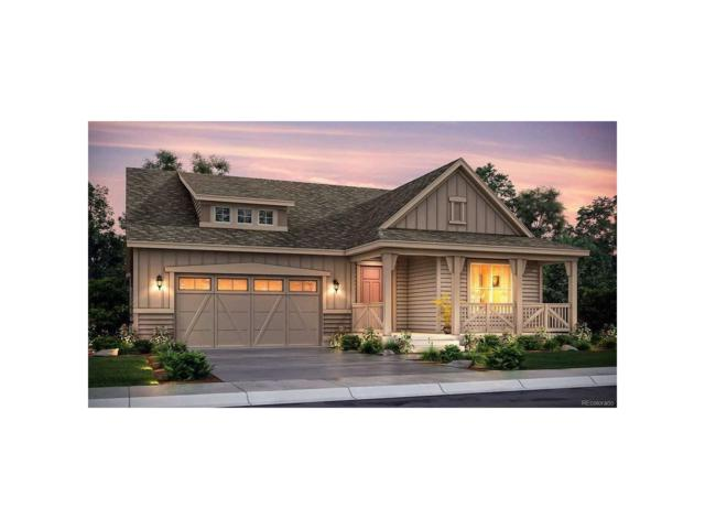 9772 Taylor River Circle, Littleton, CO 80125 (MLS #7899629) :: 8z Real Estate