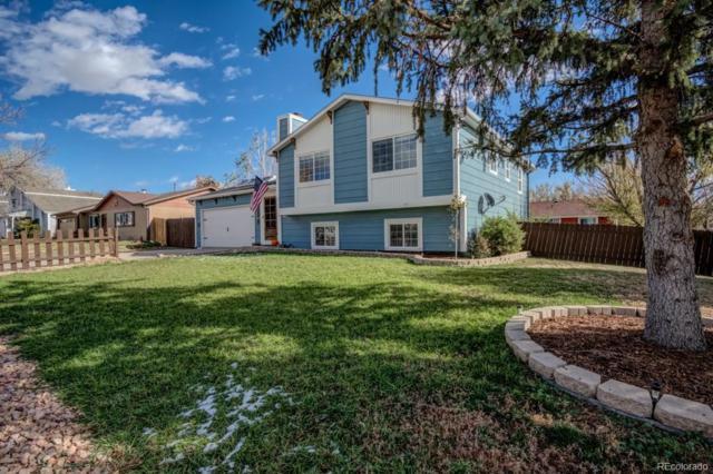932 N Candlestar Loop, Colorado Springs, CO 80817 (#7901003) :: Sellstate Realty Pros