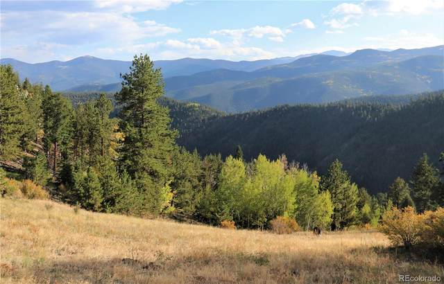 000 Overlooked Way, Idaho Springs, CO 80452 (MLS #7903232) :: Neuhaus Real Estate, Inc.