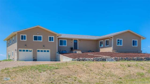 11103 N Cottontail Lane, Parker, CO 80138 (#7904632) :: The DeGrood Team