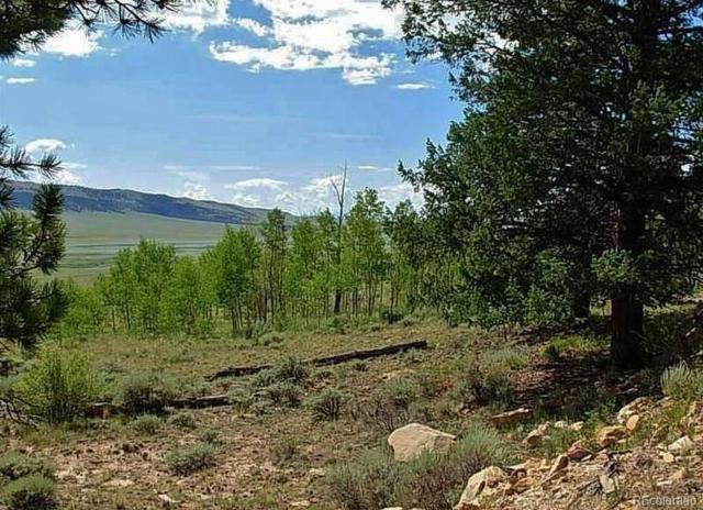 LOT452 Redhill Road, Fairplay, CO 80440 (#7911096) :: Wisdom Real Estate
