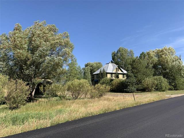 33250 County Road 14, Steamboat Springs, CO 80487 (#7912586) :: The Scott Futa Home Team