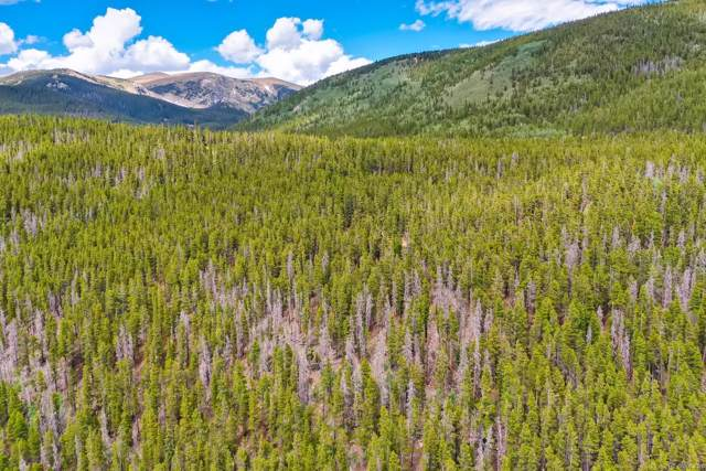 2 Fall River Road, Idaho Springs, CO 80452 (MLS #7913801) :: 8z Real Estate