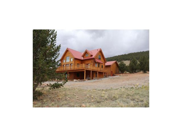 189 Reinecker Road, Fairplay, CO 80432 (MLS #7914168) :: 8z Real Estate