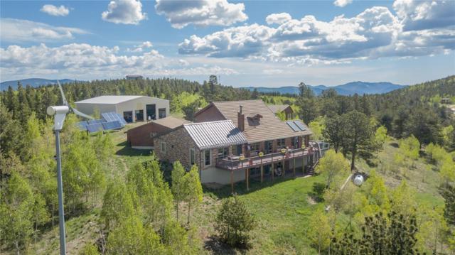 275 Alpine Way, Idaho Springs, CO 80452 (#7915452) :: 5281 Exclusive Homes Realty