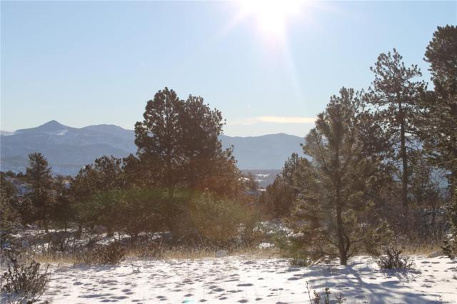 1365 Apache Trail, Florissant, CO 80816 (MLS #7915751) :: 8z Real Estate