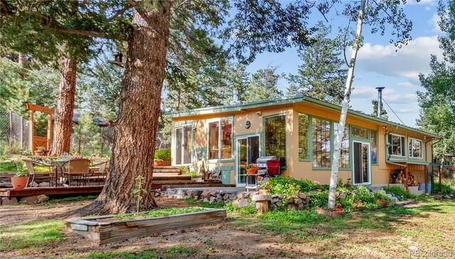 66 Green Wald Way, Evergreen, CO 80439 (#7915993) :: Venterra Real Estate LLC