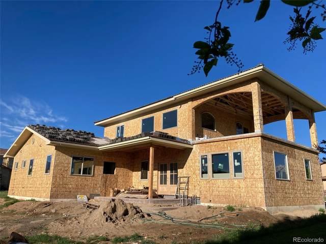 203 Cottonwood Circle, Salida, CO 81201 (MLS #7918689) :: Bliss Realty Group