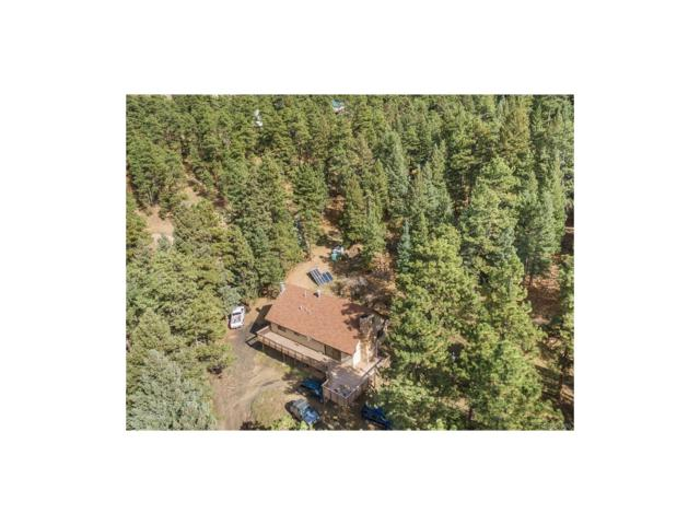 8036 S Deer Creek Canyon Road, Morrison, CO 80465 (#7919633) :: The Peak Properties Group