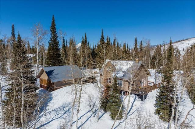 57955 Jupiter Place, Clark, CO 80428 (#7925278) :: The Peak Properties Group