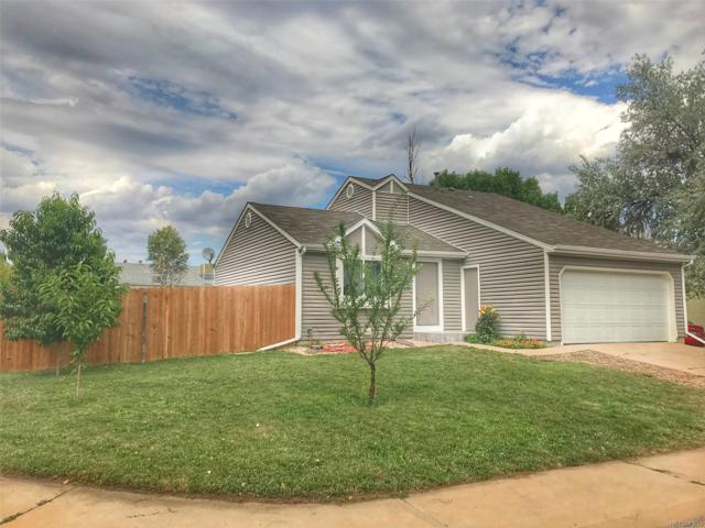 6355 W 115th Avenue, Westminster, CO 80020 (MLS #7925931) :: 8z Real Estate