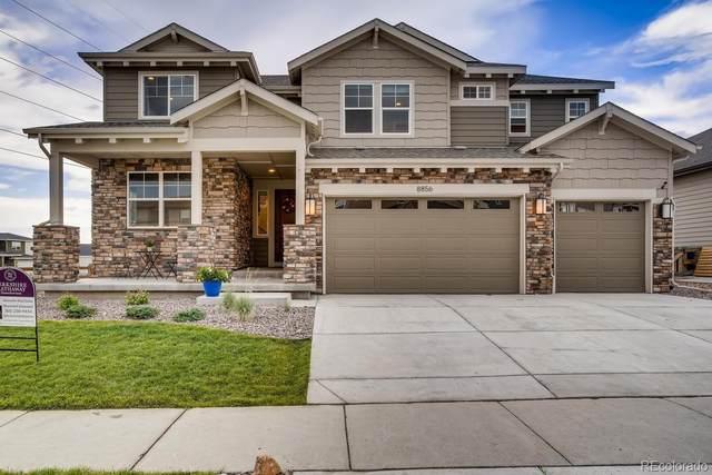 8856 Eldora Street, Arvada, CO 80007 (#7927694) :: Mile High Luxury Real Estate