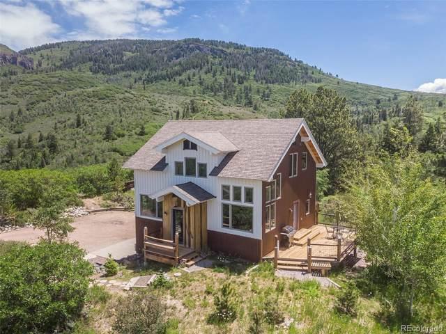 22860 Snowbird Trail, Oak Creek, CO 80467 (#7931354) :: Bring Home Denver with Keller Williams Downtown Realty LLC