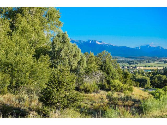 10390 Hutchinson Lane, Poncha Springs, CO 81242 (#7932871) :: Group 46:10 - Denver