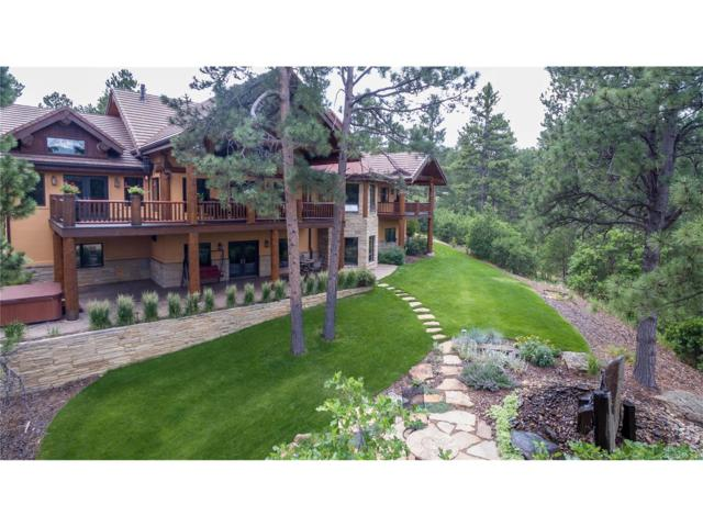 6833 Yampa Drive, Larkspur, CO 80118 (MLS #7935115) :: 8z Real Estate