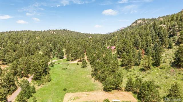 12516 Calfee Gulch Road, Conifer, CO 80433 (#7935429) :: THE SIMPLE LIFE, Brokered by eXp Realty
